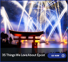 35 Things We Love About Epcot GO NOW