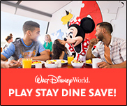 Disney Parks: Play Stay Dine Save Play